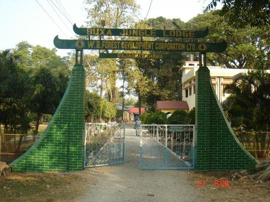Just outside the compound of the Buxa Jungle Lodge at Rajabhatkhawa.