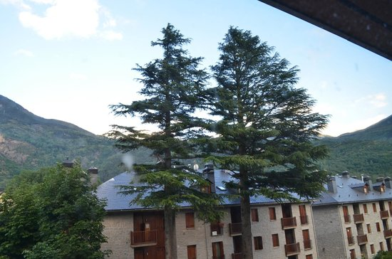 Hotel Aneto : View from the hall