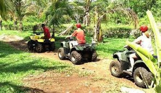 Belize Jungle Trek : Jungle ATVs