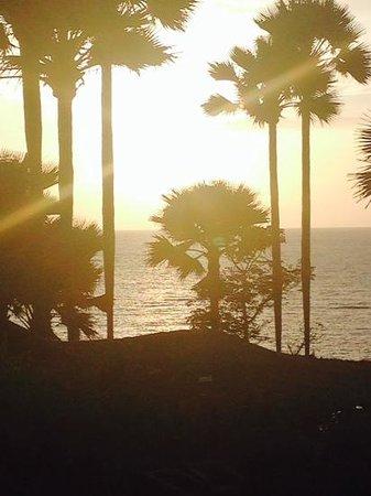 Ngala Lodge: sunset at Ngala