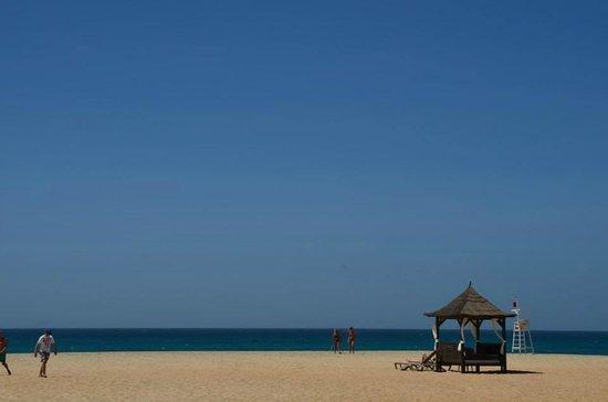 Melia Tortuga Beach Resort & Spa : Hotel Beach