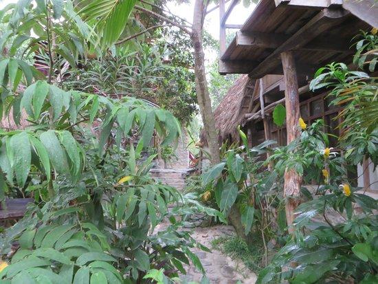 Eco Quechua Lodge: en route vers les chambres