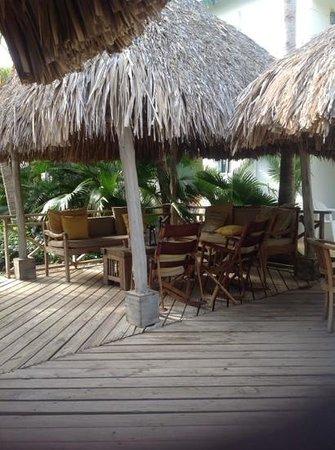 Paradera Park Aruba : garden