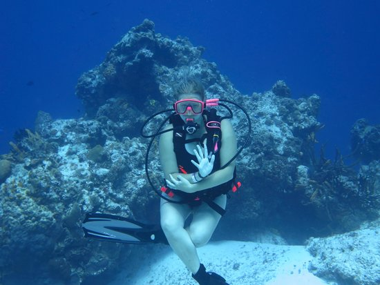 Cozumel Palace : Diving with Aqua Safari