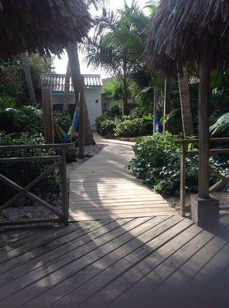 Paradera Park Aruba: garden 2