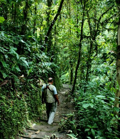 San Jorge de Milpe Eco-Lodge Orchid & Bird Reserve: Dr. Jorge Cruz on cascada trail.