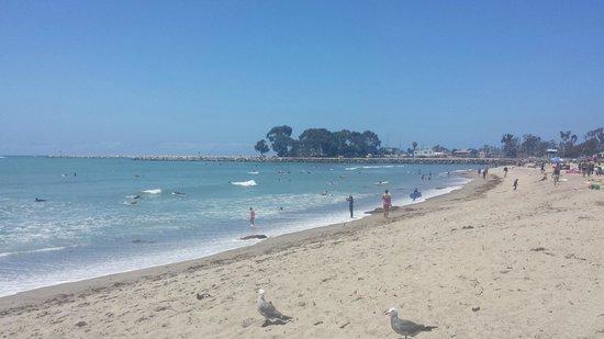 Дана-Пойнт, Калифорния: Beach