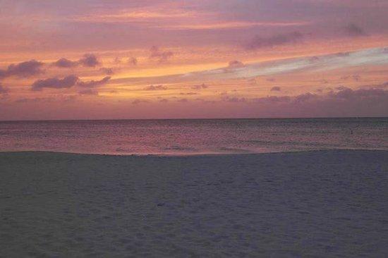 Bucuti & Tara Beach Resort Aruba : Beach at Sunset