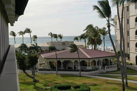 Bucuti & Tara Beach Resort Aruba : View from a Superior Garden View Room