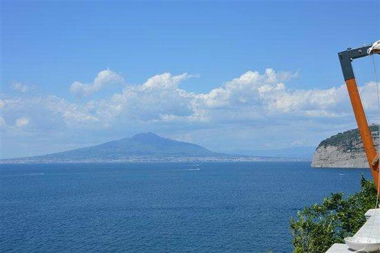 Hotel Parco dei Principi: Vista sul Vesuvio
