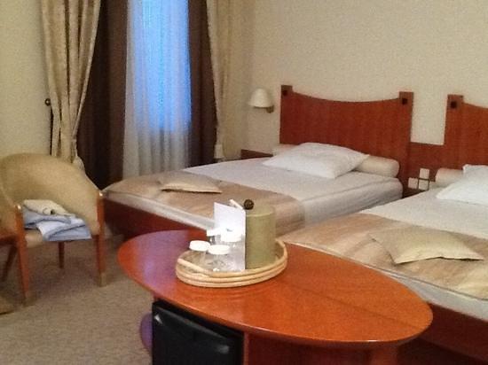 Grand Hotel Union: camera 245