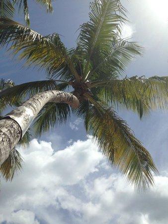 Windjammer Landing Villa Beach Resort: On the beach, cloud watching
