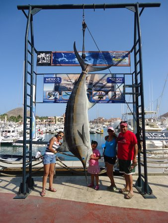 Cabo San Lucas Tours: la toma que no puede faltar