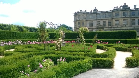 Longleat: rose garden and house, very peaceful
