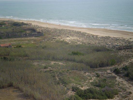 Hotel Playas de Guardamar: Entorno mas cecano