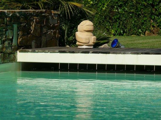 La Dryade : piscine