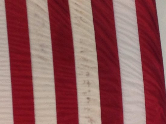 DoubleTree by Hilton Somerset Hotel & Conference Center: Mold on the Flag!!!!