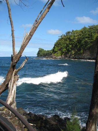 Hawaii Tropical Botanical Garden: Ocean over-look