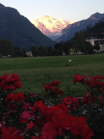 Hotel Royal St. Georges Interlaken - MGallery Collection : por do sol