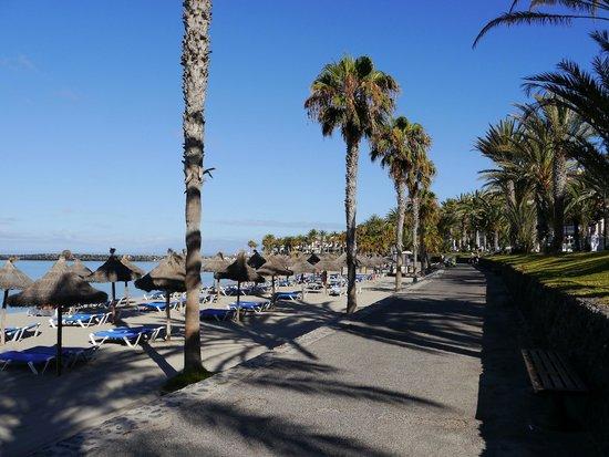 Cleopatra Palace Hotel : Пешеходная дорожка перед пляжем