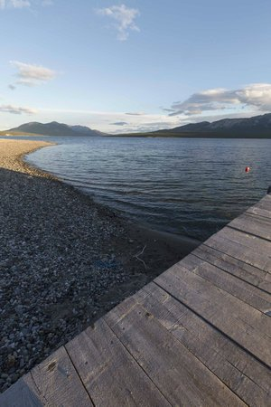 Tagish Wilderness Lodge : View up the coast from the jetty.