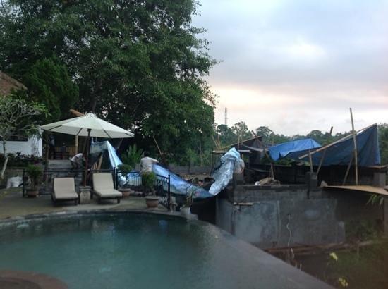 Ubud Dedari Villas: pool view