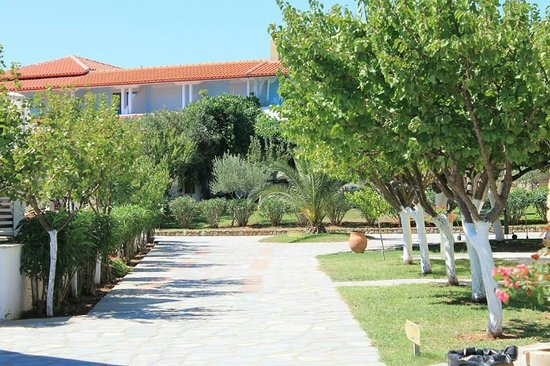 Antigoni Beach Hotel & Suites: Antigoni
