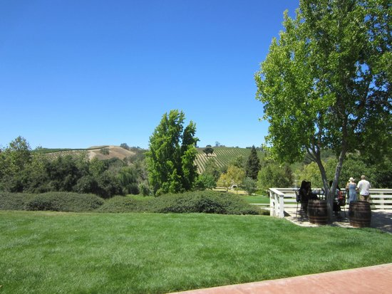 Bridlewood Estate Winery: horse track and vineyards
