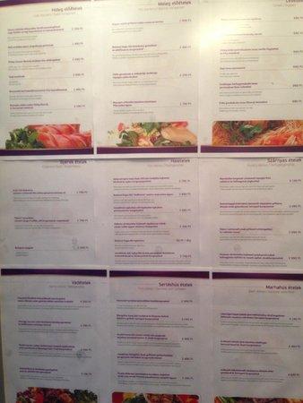 Residence Balaton Conference & Wellness Hotel: Menu in the elevator