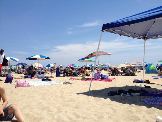 Jenkinson's Boardwalk : beach