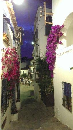 Hotel Mediterrani: rue de callela