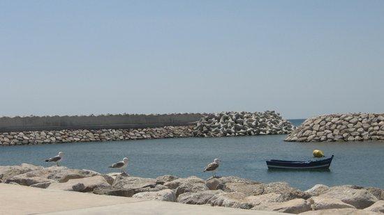 Fnideq, Marruecos: Le port la plage