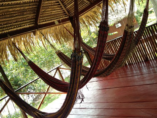 Amazon Turtle Lodge : Relaxing in the hammocks