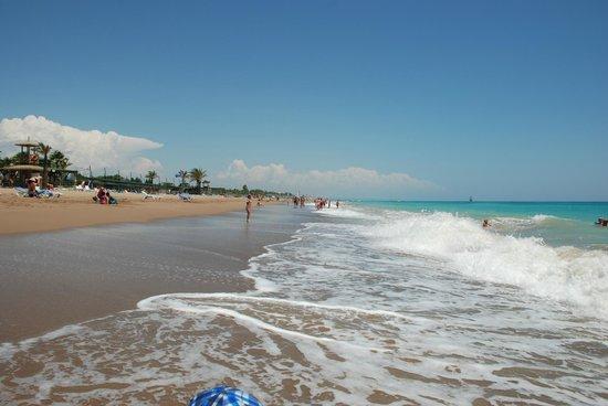 Pegasos World Hotel: beach
