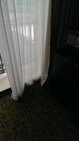 Salt Lake Plaza Hotel: drapes