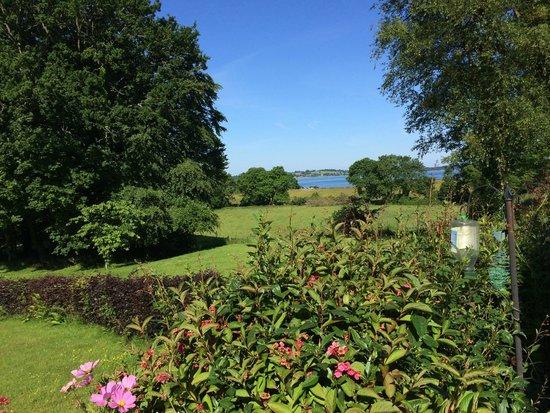 Lough Owel Lodge : View of the Lake