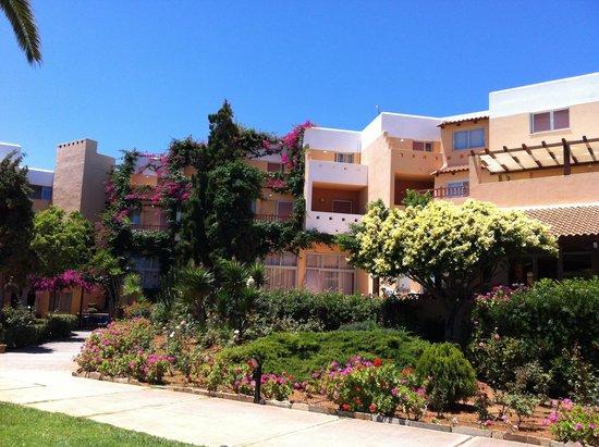 Anissa Beach Hotel : Корпус с номерами
