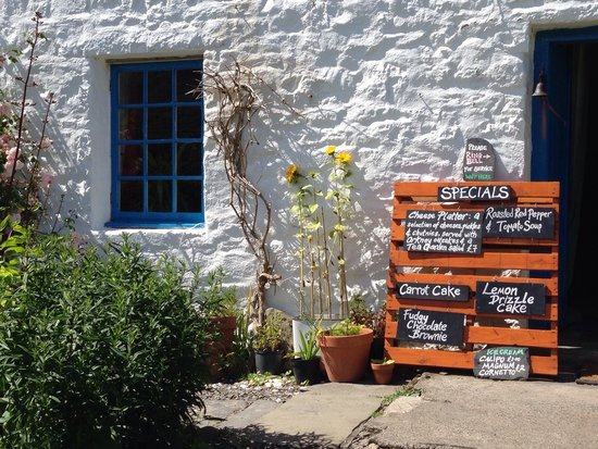 Kerrera Tea Garden & Bunkhouse: Sunny day in garden looking at menu