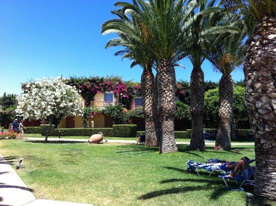 Anissa Beach Hotel : Территория отеля