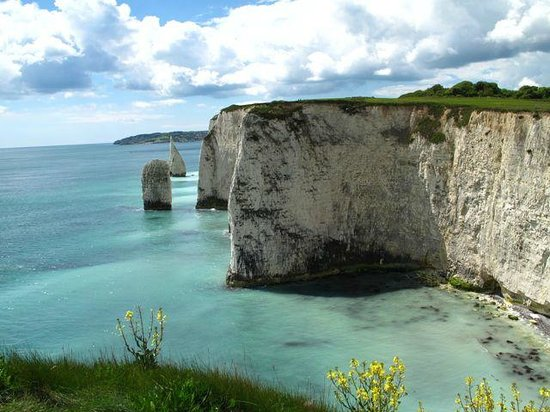 Old Harry Rocks : Looking east along the coastal path