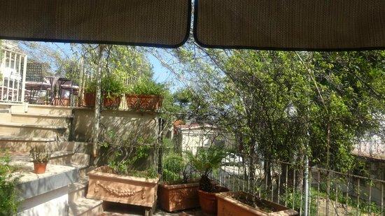 Hotel Tirrenia: Ground Floor garden