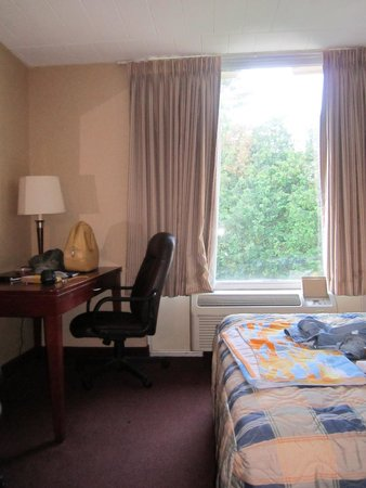 Econo Lodge: Interior shot of room 225