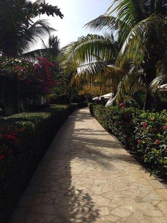 Mayan Princess Beach & Dive Resort: Pasillo patio