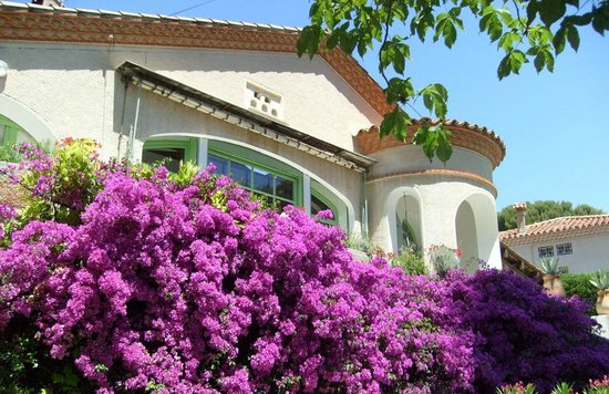Cassis Hostel: nativeness in beautiful landscape