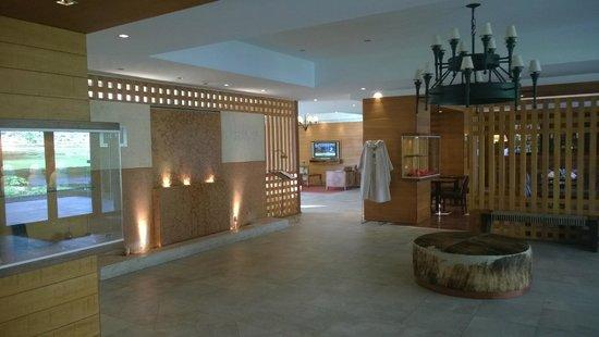 Rochester Hotel Calafate : recepção