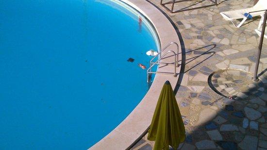 Praia Mar Hotel : piscina
