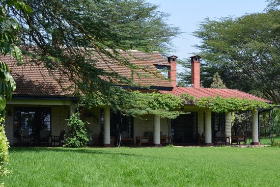 Kiangazi House: Back of the house
