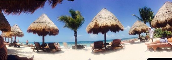 Excellence Playa Mujeres: panoramic picture of the beach with Fidel, the best bartender at the Excellence Club Beach