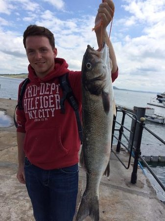 Harry May Boat Trips: sea bass