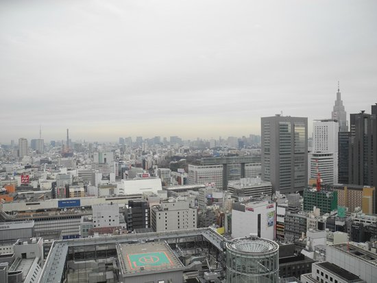 Keio Plaza Hotel Tokyo: View from Plaza Luxe Lounge